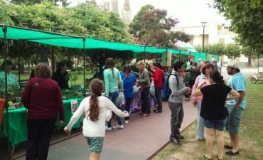 Como todos los sábados de este verano 2016, se está desarrollando la Feria Verde