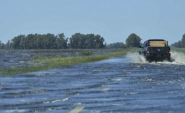 Ya hay 450.000 hectáreas dañadas por las lluvias en General Villegas