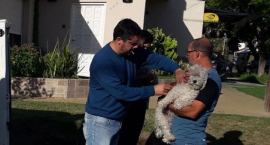 Comenzó la vacunación antirrábica gratuita para perros y gatos