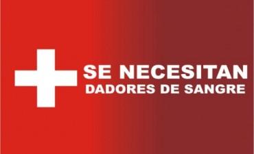 URGENTE: Se necesitan 15 dadores de sangre que viajen a Buenos Aires para un niño bolivarense que será intervenido quirúrgicamente