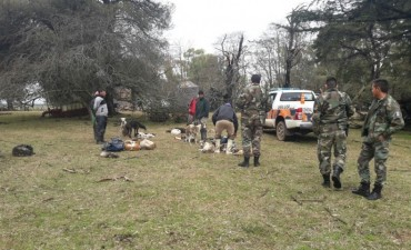 Actuaciones de la Coordinación de CPR: Caza furtiva con perros