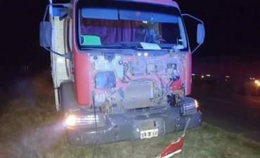 Camión embistió una vaca sobre ruta 86, a pocos kilómetros de la rotonda de ruta 65