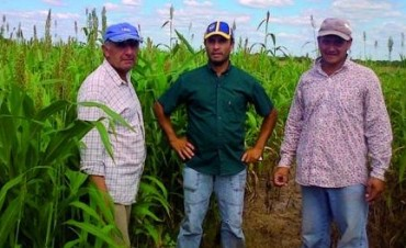 InfoCampo: El 90% de los productores está conforme con las políticas oficiales