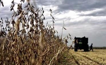 El agro espera una temporada con inestabilidad climática y lluvias por el fenómeno de
