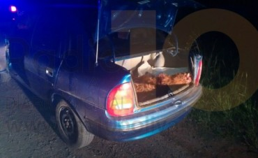 Abigeato y Persecución: Se otorgó la detención para dos personas atrapadas en 'Flagrante Delito'
