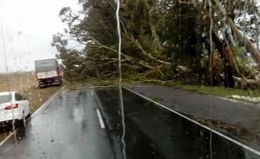 La ruta 65 permanecerá cortada hasta este jueves