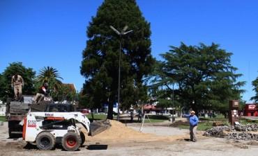 Plaza Mitre: El Municipio comenzó su puesta en valor