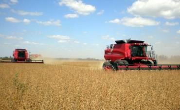 Se sembró un 90 % del área sojera y un 75 % de maíz del ciclo 2014-2015