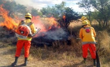 Los incendios afectan más de un millón de hectáreas en La Pampa, Río Negro y Buenos Aires