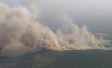 Incendios en La Pampa: el gobierno dio a conocer los focos activos hasta este martes