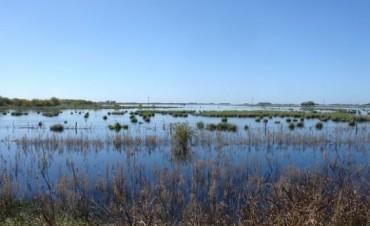 Más de 2 millones de hectáreas bajo el agua