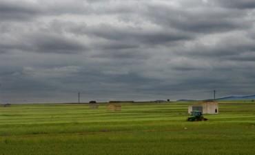Intensas lluvias pero con medidas dispares en el partido de Bolívar