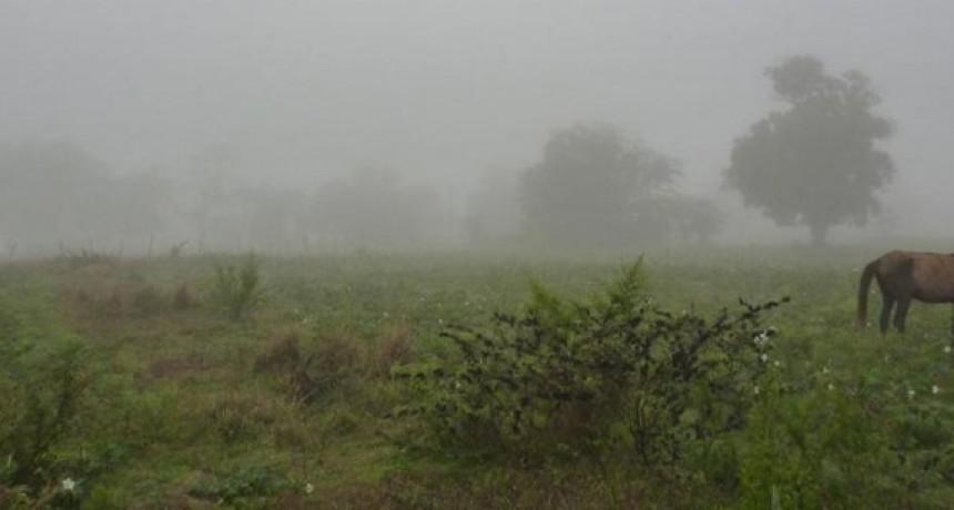 Últimos registros de lluvias: Hasta 120 mm caídos en Bolívar y la zona