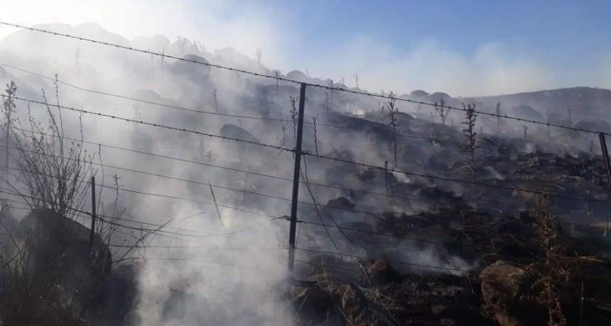 Sierras de Coronel Pringles: Más de 10 mil hectáreas arrasadas por un incendio
