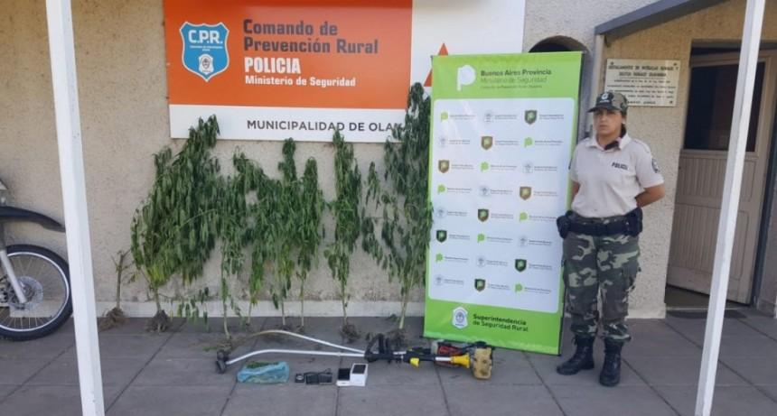 Informe CPR Olavarría sobre investigaciones de Robo a la escuela rural 44