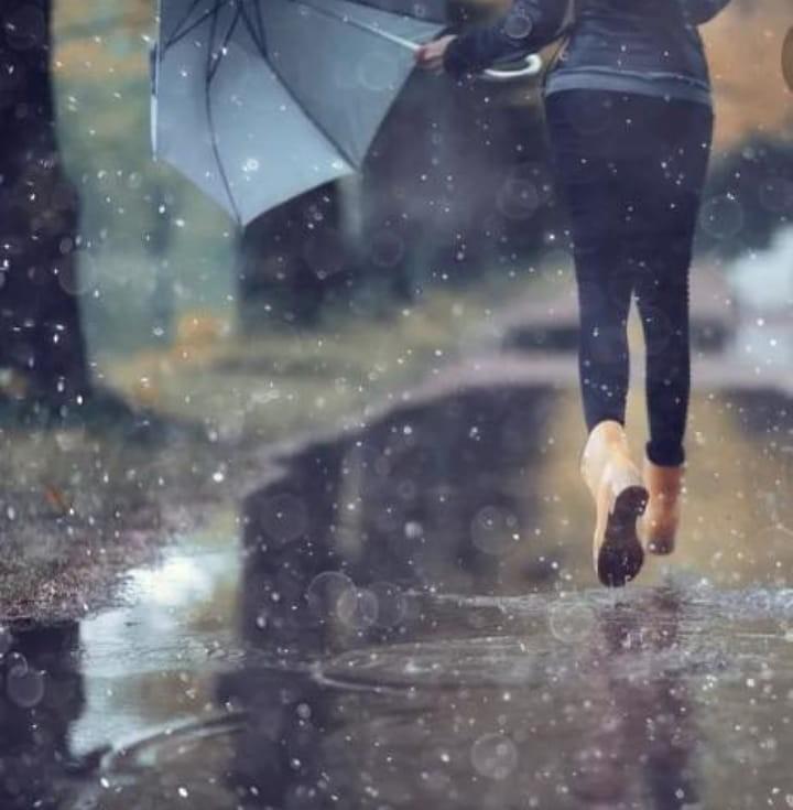 Registro de lluvias 14 de enero; mediciones que van de los 10 a los 70 mm en Bolívar y la zona