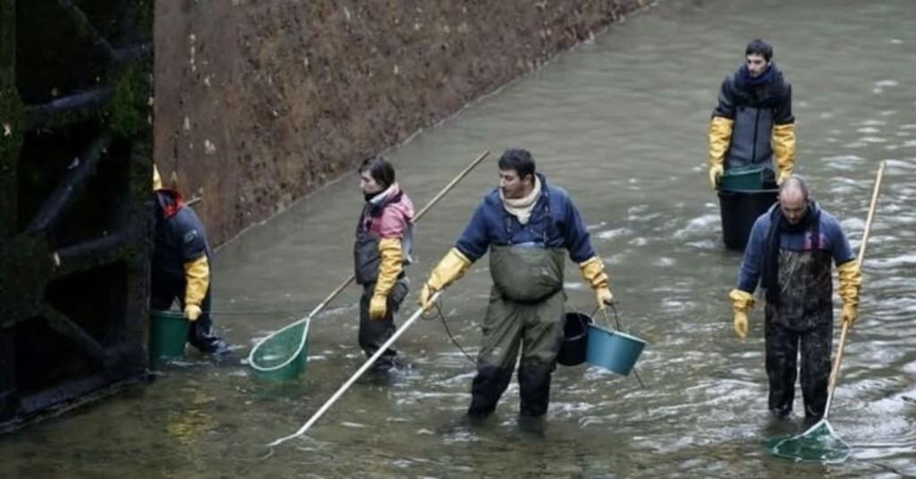 Arroyo Las Flores: Buscaron a un pescador porque temían que se hubiera ahogado, y había caminado en busca de