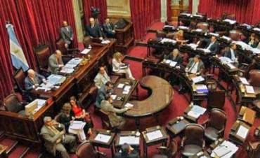 El Senado debate la reforma del sistema de inteligencia
