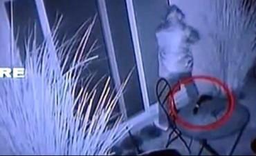 Según Seguridad, quien robó a Massa no perteneció a la Dirección de Inteligencia