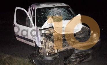 Ruta 226: Cuatro caballos sueltos causaron un violento accidente