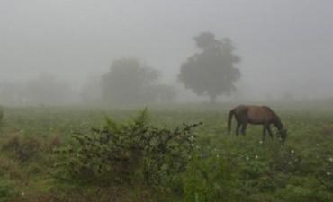 Se abatieron lluvias de más de cien milímetros en el partido de Bolívar