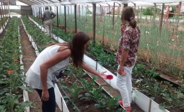 Guinea y Ruíz visitaron Cultivos Donkito, emprendimiento de flores
