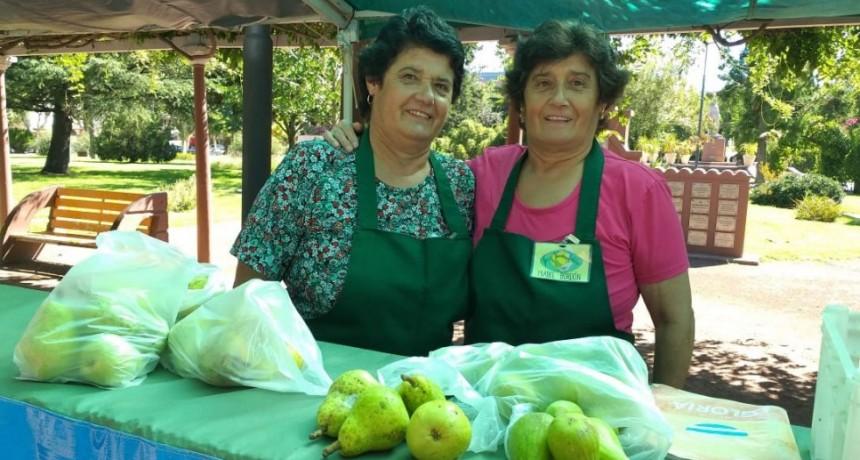 Una jornada más de la Feria Verde en Plaza Alsina