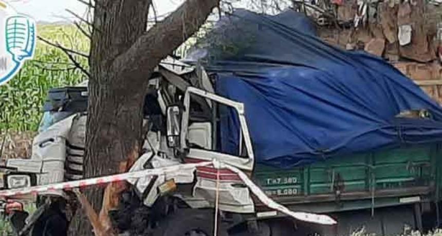 Ruta 5: Fallece un transportista tras despistarse su camión