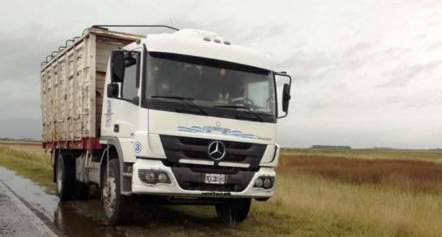 Gral. Alvear; Camión con vacunos sufrió un despiste en la Ruta Nacional N° 205
