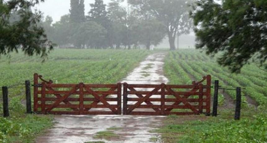 Lluvias irregulares en el partido de Bolívar