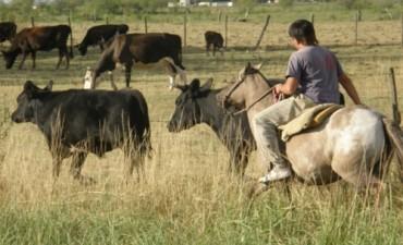 Festejos por el Día del Ruralista