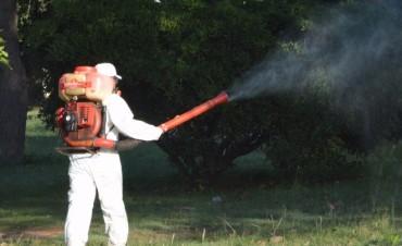Fumigación: Culminó en planta urbana y sigue en los barrios y en el parque