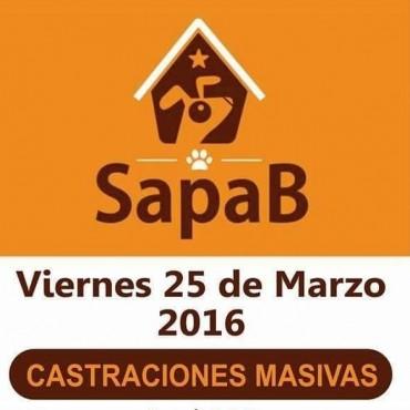 Vuelven las castraciones masivas de Sapab