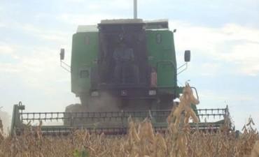 Recomendaciones del INTA Pergamino de cara a la cosecha de maíz y soja.