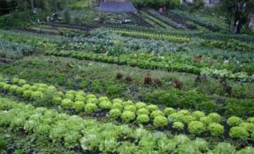 Se realizará una capacitación en 'Huertas Agroecológicas'