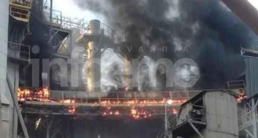 Importante incendio en Cementos Avellaneda: trabajaron Bomberos de Loma Negra y Olavarría