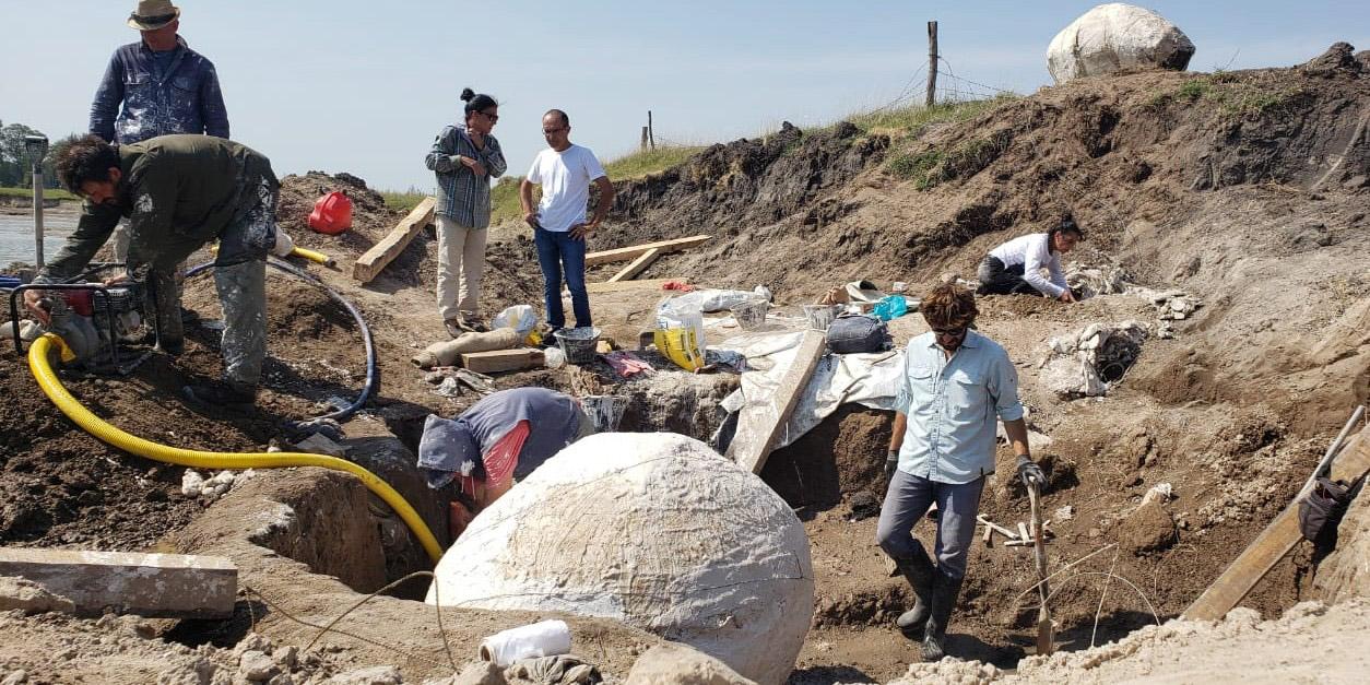 Marcos Pisano asistió a la extracción de los glyptodontes