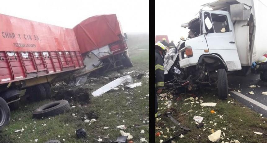 Un hombre fallecido es el saldo de un choque entre dos camiones en cercanías de Nueve de Julio