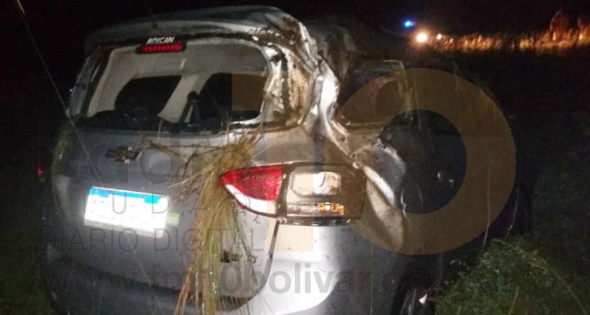 Despiste en Ruta 65 km 287; Sin mayores consecuencias para el ocupante del vehículo