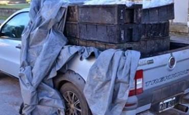 OLAVARRIA: Decomisaron 800 kilos de pejerrey que era transportado en un vehículo no apto ni habilitado
