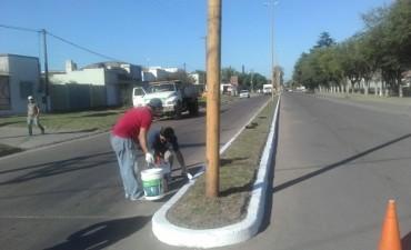 Se están pintando las rotondas, cordones y lomos de burro