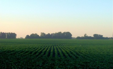 Inversión 4 veces superior a la de 2015: La Provincia destinó más de $16 millones a proyectos productivos agroindustriales