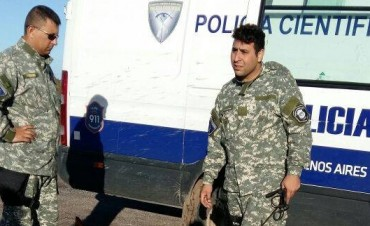 Desaparición de Miranda: La División Canes de Buenos Aires, continúa la búsqueda