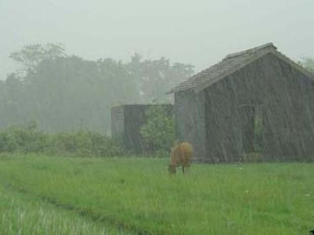 Entre 6 a 45 mm el registro de lluvias en el partido de Bolívar