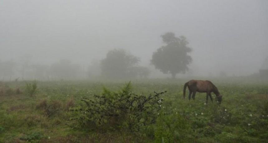 Registro de lluvias desde 4 a 60 milímetros en el partido de Bolívar