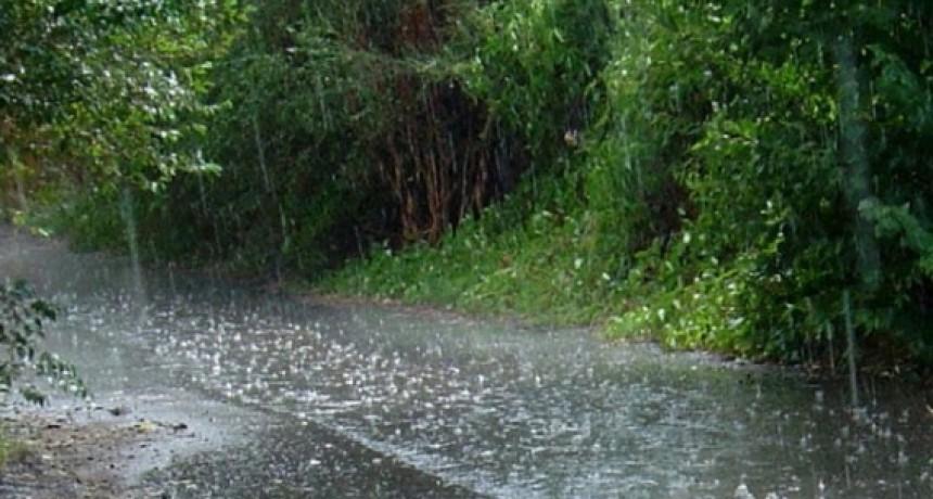 Se registraron hasta 30 mm caídos en Bolívar y la zona