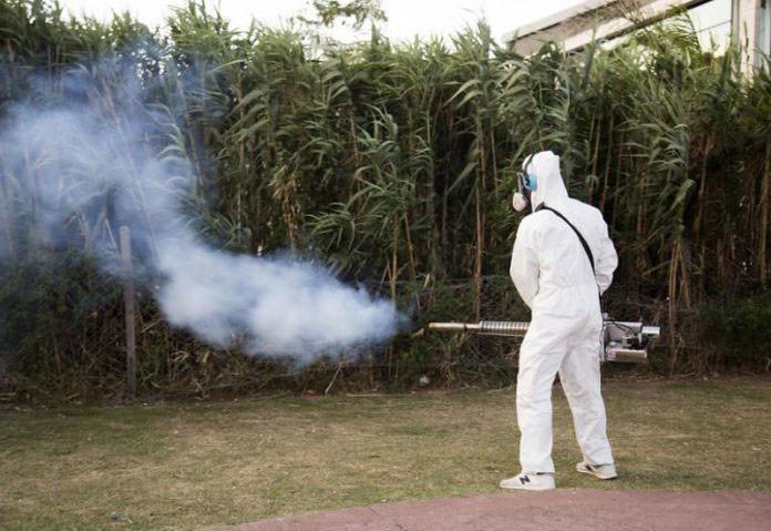 Los casos de dengue suman 947 en la provincia y hay brote en 29 municipios
