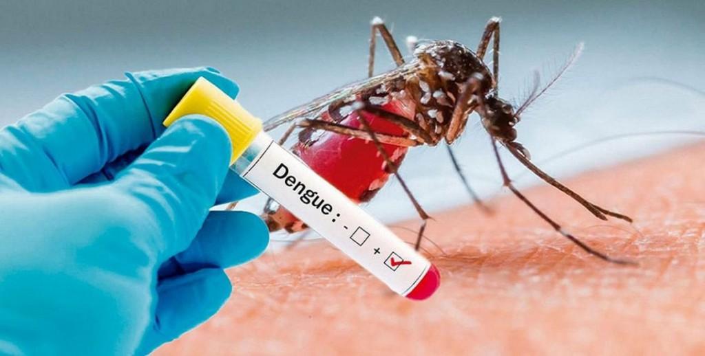 Saladillo; Se confirmaron dos casos más de dengue