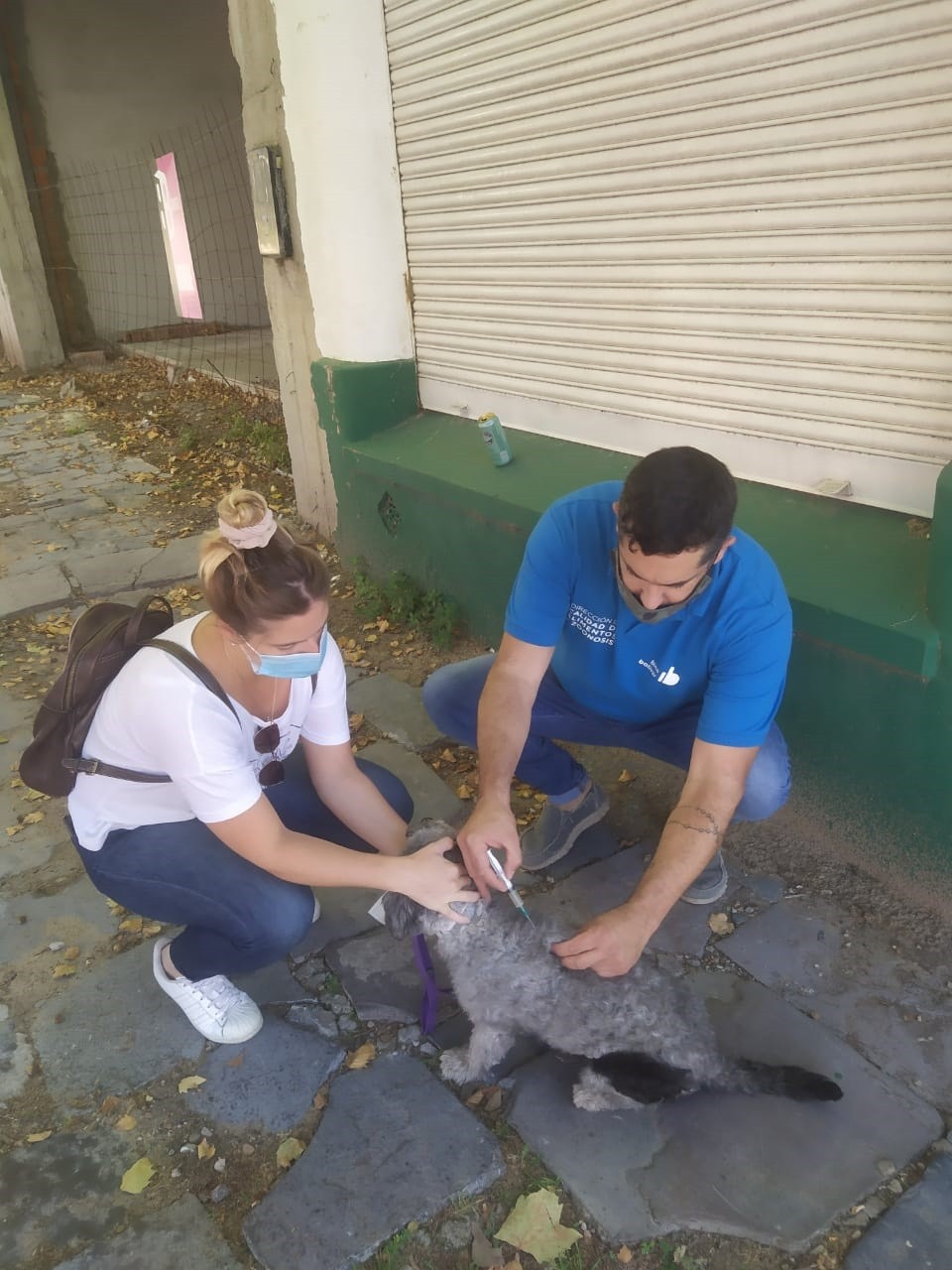 Comenzó la Campaña de Vacunación Antirrábica en Bolívar