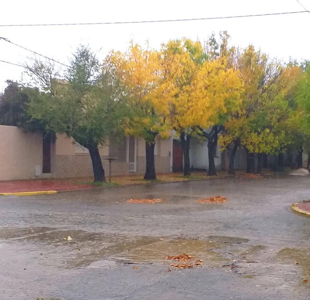 Registro de lluvias: Desde 25 hasta 105 mm registrados en el Partido de Bolívar y la zona
